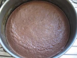 12 Pfirsich-Melba-Torte - Fertiger Tortenboden