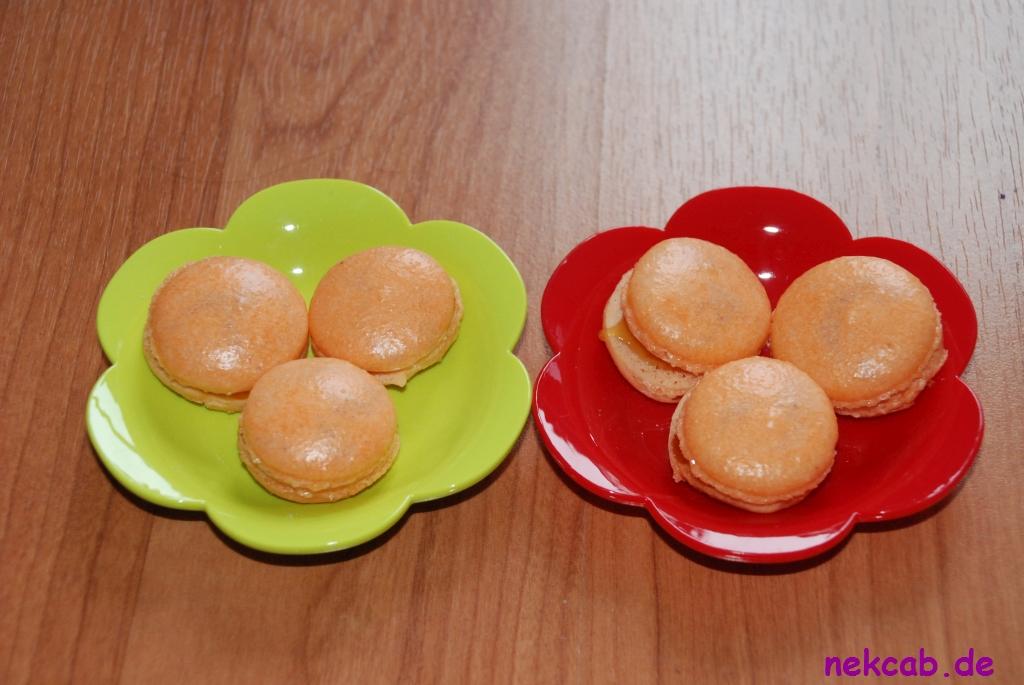 Macaron - 1-3